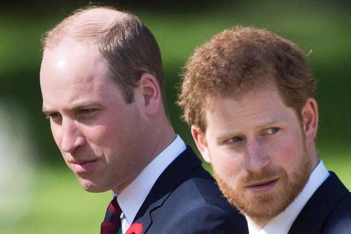 И снова друзья Меган Маркл: инсайдеры слили в сеть о чем на днях говорили принц Гарри и принц Уильям