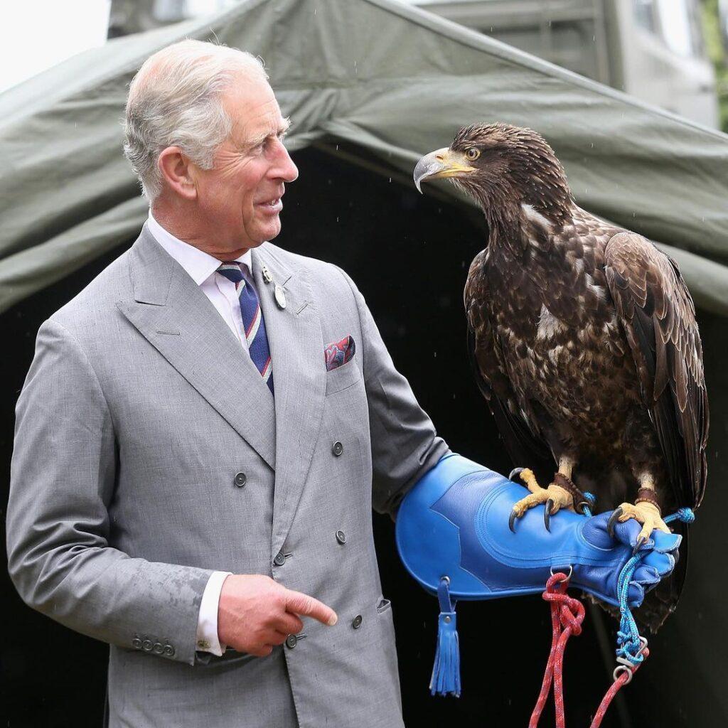 Принц Чарльз заботится об экологии, но летает больше, чем любой другой член королевской семьи